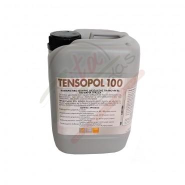 Καθαριστικό FAREN TENSOPOL 100 5 lt