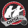 ORSI GROUP